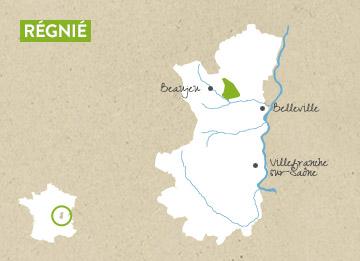 Régnié