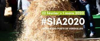 SIA 2020